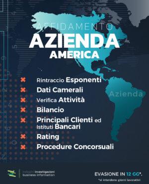 Affidamento Azienda America